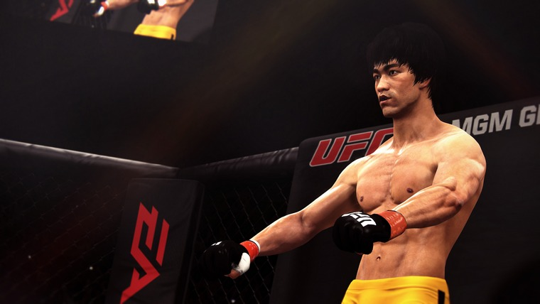 eas-ufc-why-bruce-2[1]