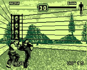 Fighters Megamix gamecom